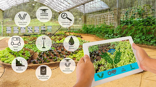 5G-farming