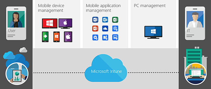 Microsoft Intune Management