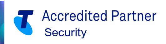 Partner - Security badge - web