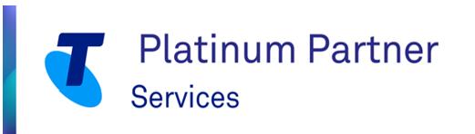 Partner = Services - platinum