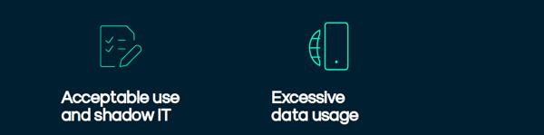 Wandera data usage notes